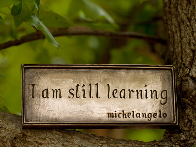 A plaque with the words: I am still learning-michelangelo, on a tree.