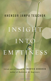 Cover of Insight into Emptiness.