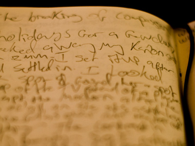 Closeup of handwriting on a page in a journal.
