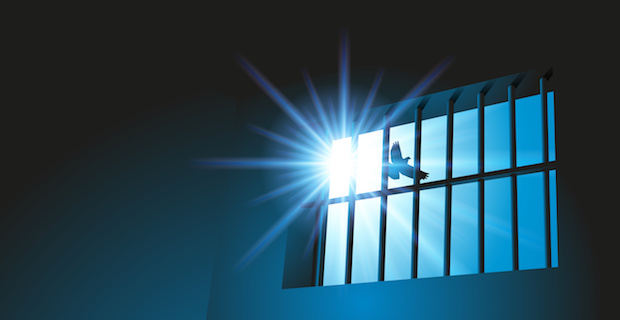 Silhouette of prison bars with blue sky, sun, and bird flying by.
