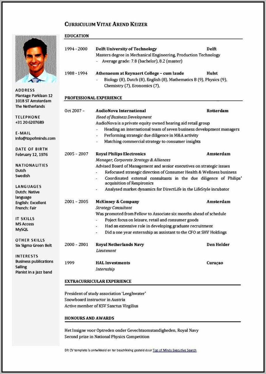 Curriculum Vitae Sample Format Free Download