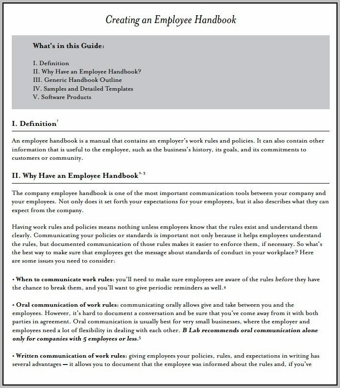 It Employee Handbook Template