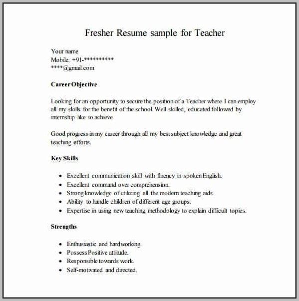 New Resume Format For Freshers Free Download