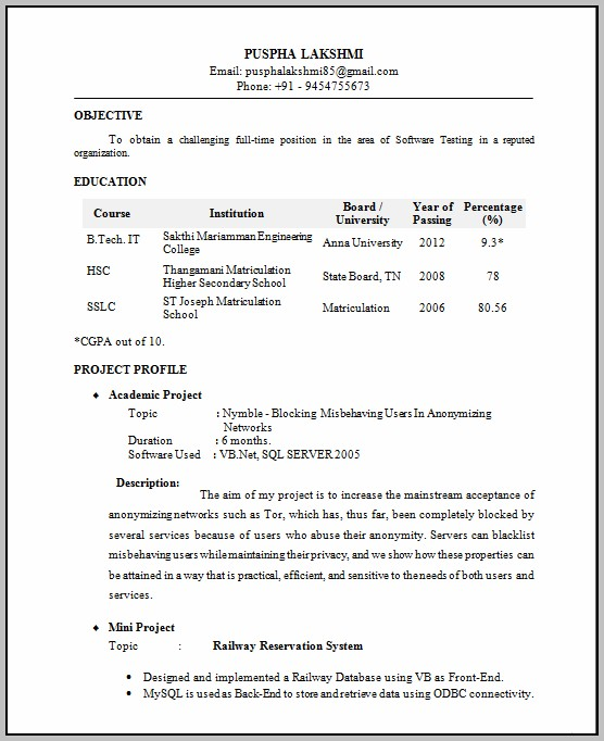 New Resume Format For It Professional