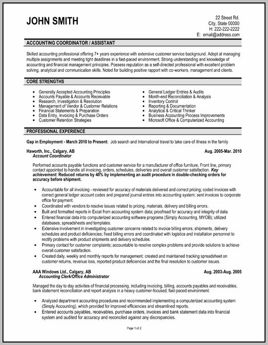 Professional Resume Examples Accounting