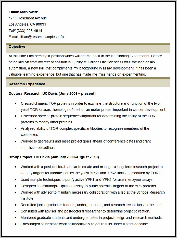 Resume For Accounting Coordinator