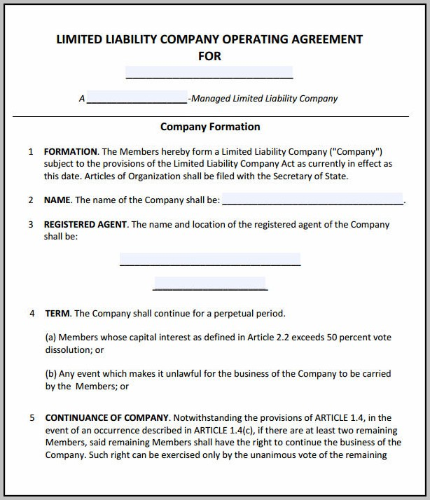 Business Operating Agreement Form