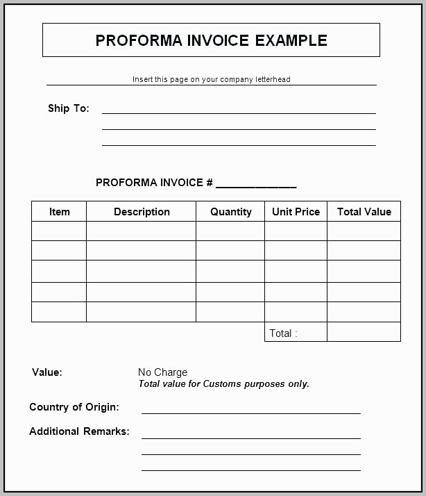 Us Customs Proforma Invoice Template