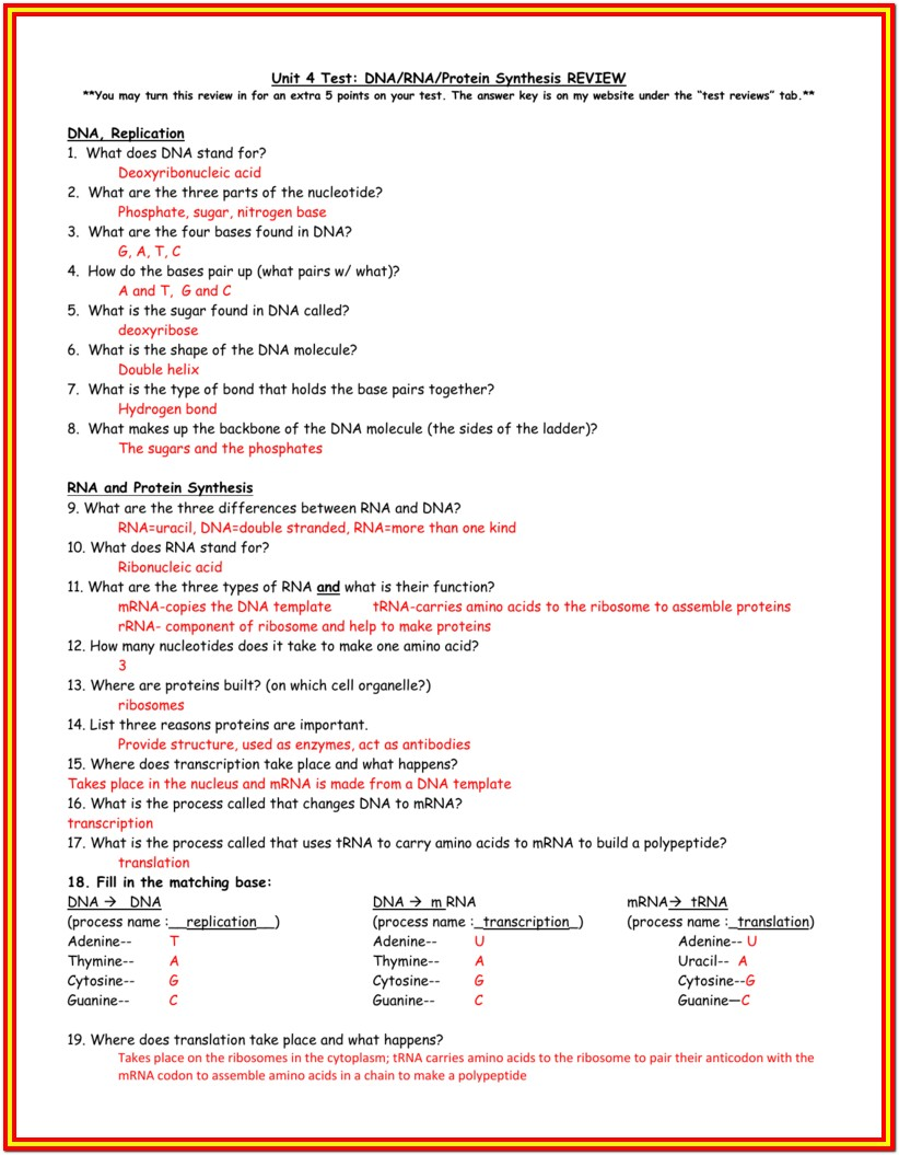 Dna Protein Synthesis Worksheet Answer Key