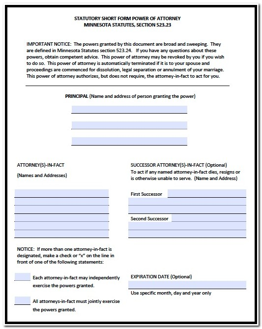 Power Of Attorney Form Mn Pdf