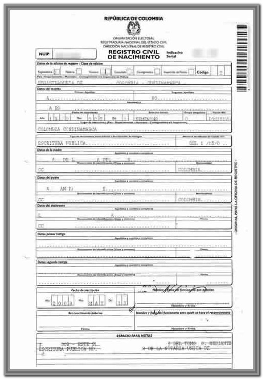 Birth Certificate Translation Template Japanese