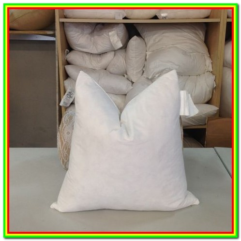 Down Filled Pillow Forms