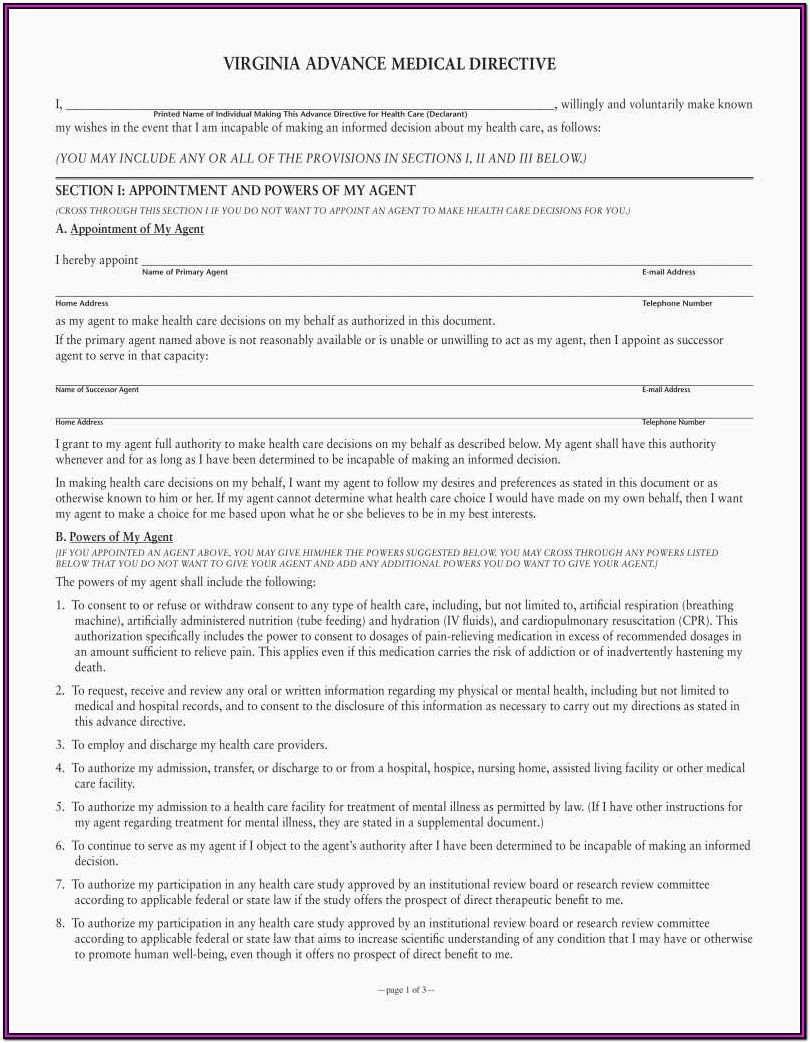 Advance Medical Directive Form Florida