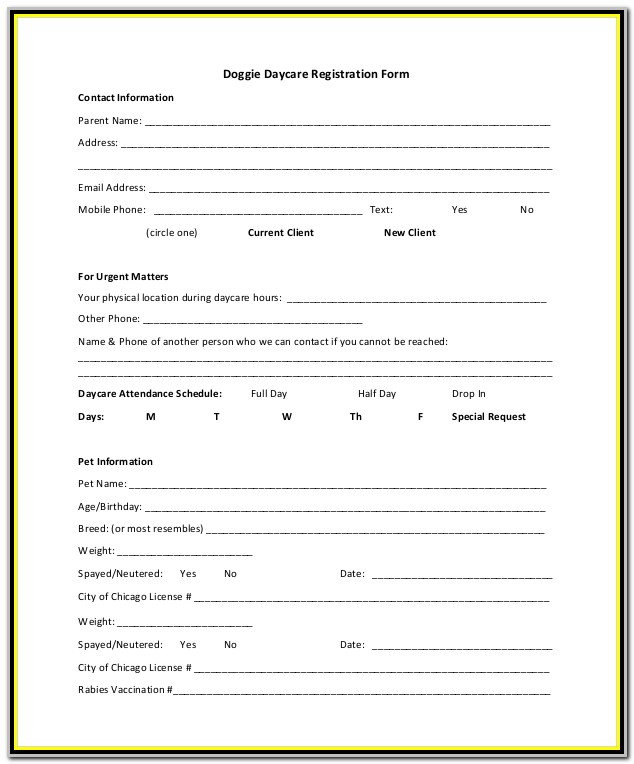 Daycare Registration Form Sample