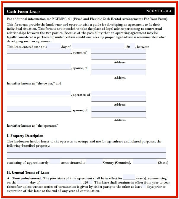 Simple Cash Rent Lease Form