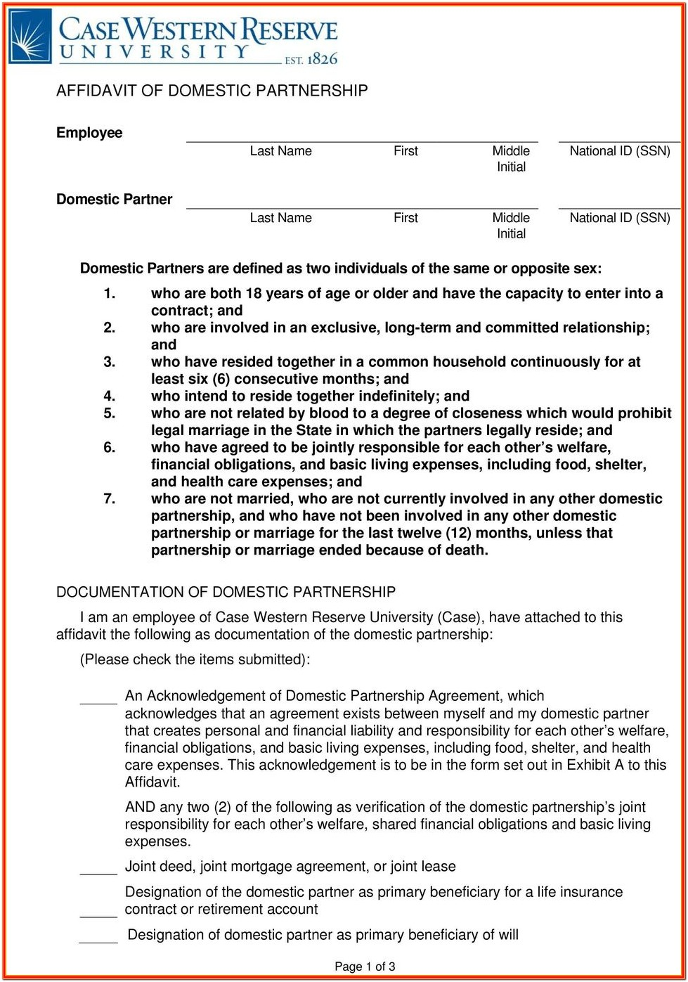 Domestic Partner Affidavit Form Texas