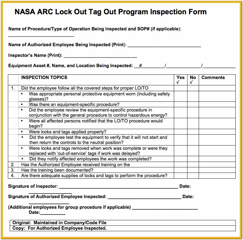 Lockout Tagout Inspection Form