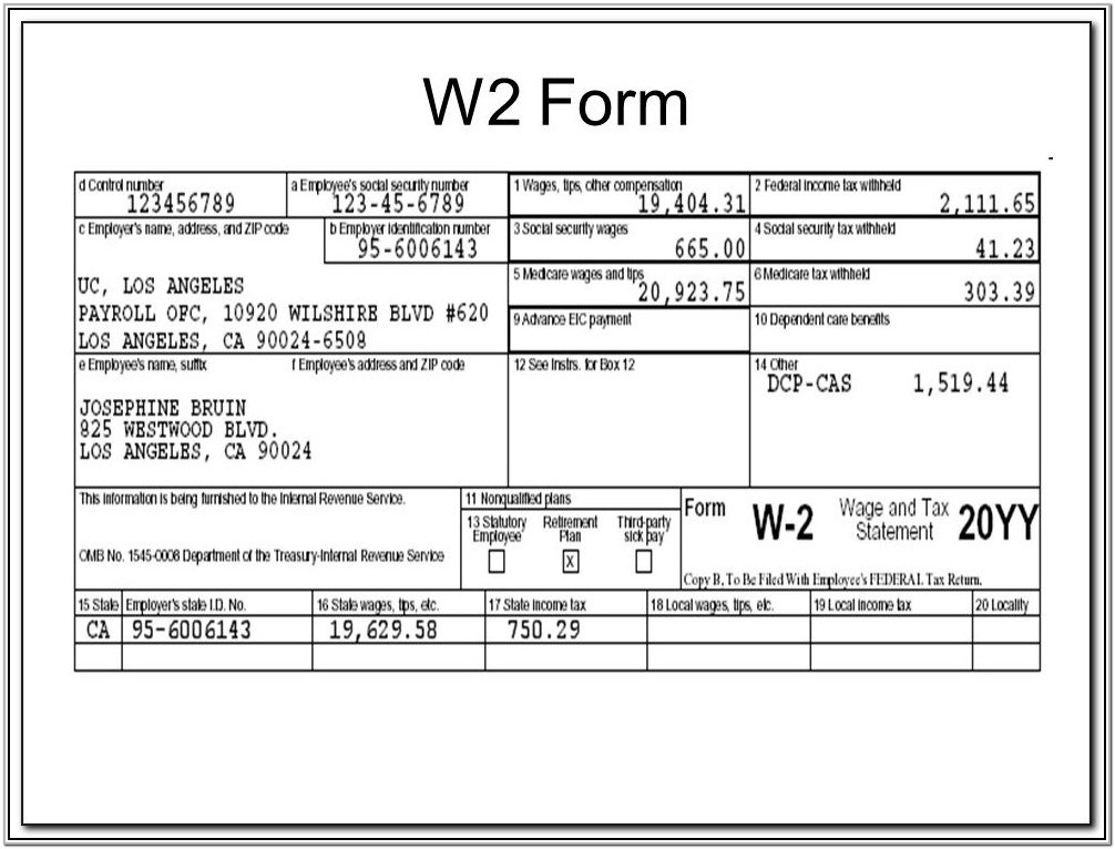 Employer W2 Forms
