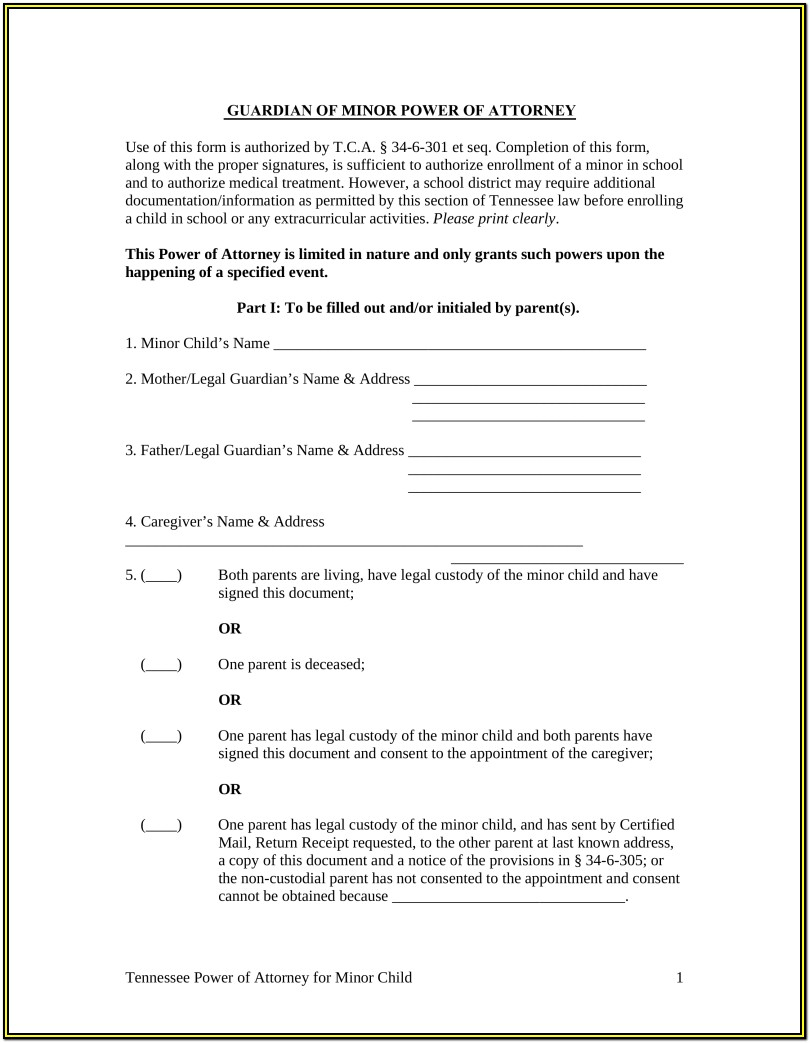 Minor Child Texas Guardianship Forms