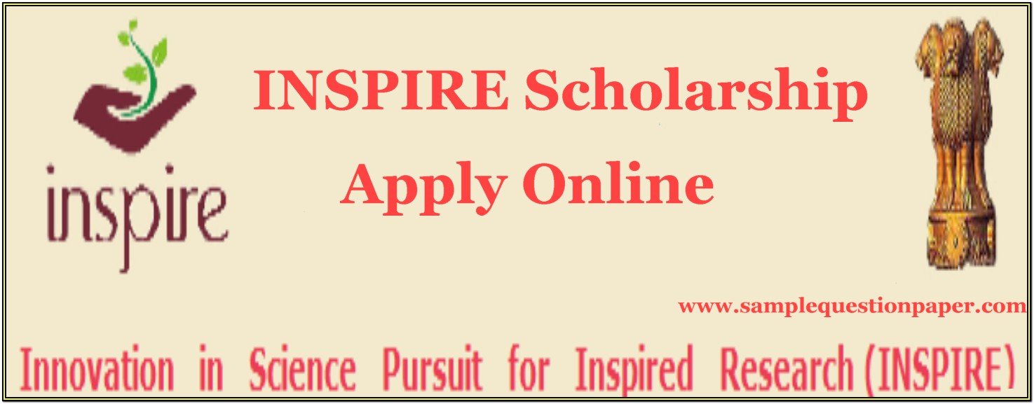 Moma Scholarship Application Form Download