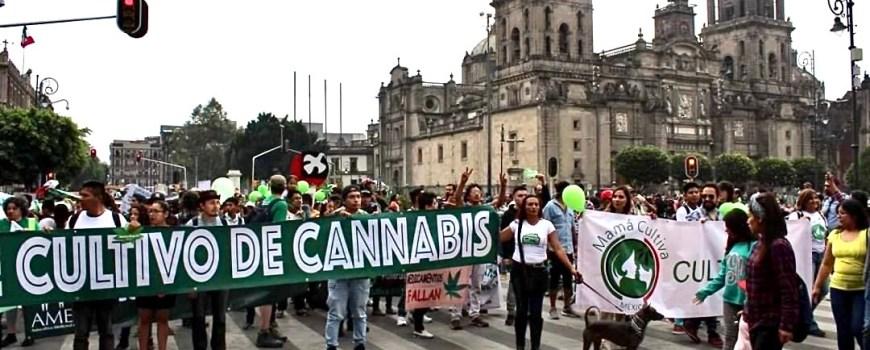 Zócalo, marcha 2019