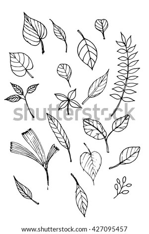 Leaf Doodle Stock Images Royalty Free Images Amp Vectors