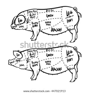 Pig Diagram Stock Images, RoyaltyFree Images & Vectors
