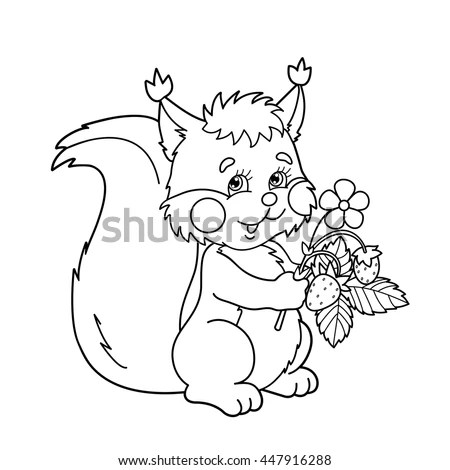 Squirrel Coloring Pages Stock Photos Royalty Free Images