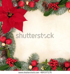 Poinsettia Flowers Glitter Forming Background Border Stock Photo     Poinsettia flowers with glitter forming a background border with bauble  decorations  holly  mistletoe and