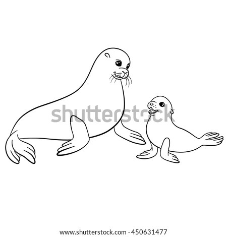 cute seal coloring pages cooloring com