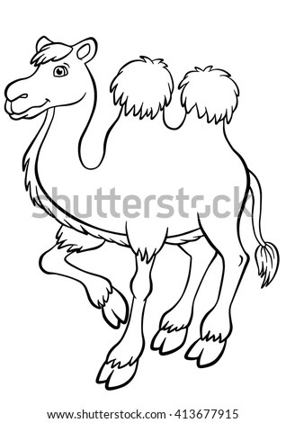 camel colour stock photos royalty free images amp vectors