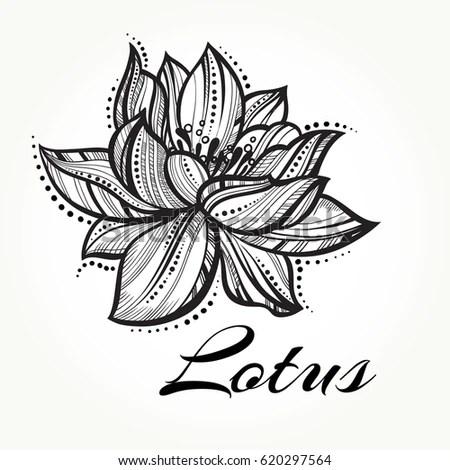 Vector High Detailed Beautiful Lotus Flower Stock Vector