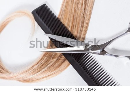 Auburn Stock Photos Images Amp Pictures Shutterstock
