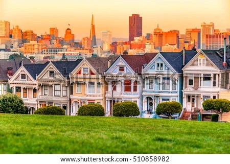 Painted Ladies Stock Images Royalty Free Images Amp Vectors