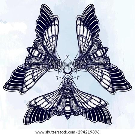 butterflies moth with moons sacred geometry circle elegant design