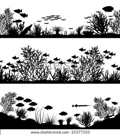 black from plant sea fotografie snímky pro členy zdarma a