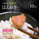 【ふるさと納税】無洗米 はえぬき 5kg×2袋 計10kg