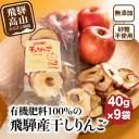 【ふるさと納税】山本果樹園 干しりんご 40g入り 9袋 9