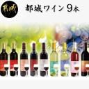 【ふるさと納税】天孫降臨神話・夢の神 ワイン9本セット -