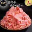 【ふるさと納税】都城産宮崎牛赤身切落し1.0kg - 霜降り