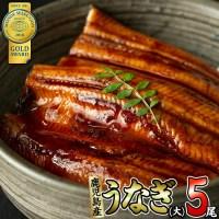 【ふるさと納税】鹿児島県大隅産!うなぎの蒲焼き5尾<計750