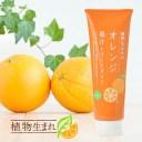 石澤研究所 植物生まれの果汁トリートメント 250g 植物生まれのオレンジトリートメント[スカルプケア ノンシリコン 弱酸性]