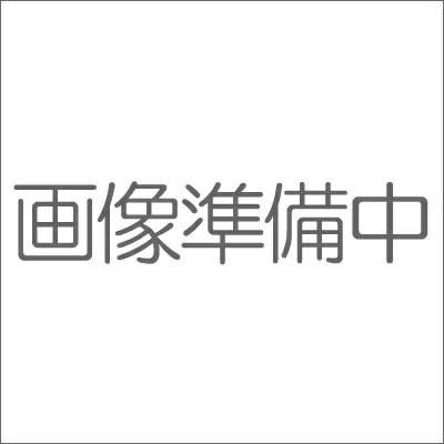 MINECRAFT マインクラフト マイケシスターターセット03 村人とすてきな家具パック 【期間限定!!全商品ポイント2倍】