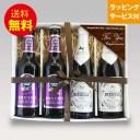 ★人気ドイツビール★飲み比べ4本セットE【即日発送可】