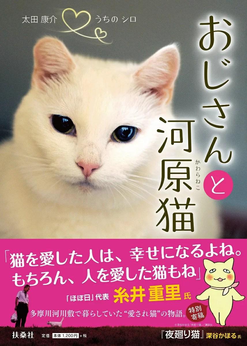 おじさんと河原猫 [ 太田康介 ]