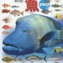 小学館の図鑑 NEO 魚 DVD付き [新版]
