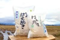 【ふるさと納税】H30年産米_特別栽培米_米沢・米 無洗米シ