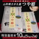 【ふるさと納税】つや姫 10kg ≪ 特別栽培米だから安心安