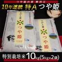 【ふるさと納税】【特別栽培米】つや姫 10kg【10年連続