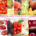 【ふるさと納税】 贅沢10回 【果物王国 山形】 さがえ産フ